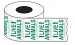 Live Animal Labels Arrows